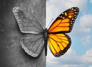 disturbo bipolare bipolarismo 300x218 - DISTURBI DELL'UMORE