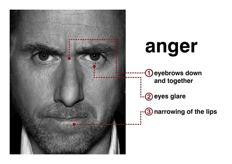 rabbia - rabbia