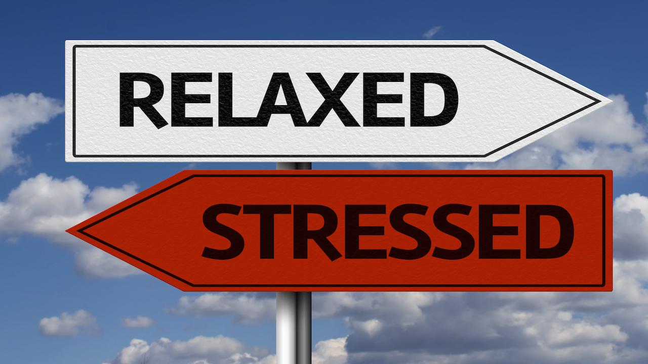 stress5 - stress5